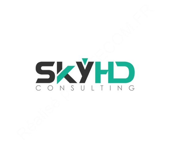 SKYHD Consulting